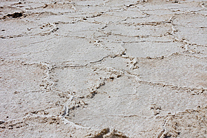 Salt Flats Stock Photos - Image: 9800183
