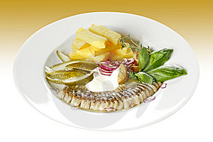 Herring Starter Stock Photo - Image: 9802250