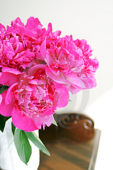 Pink Peony Royalty Free Stock Photography - Image: 9818217
