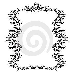 Style Fern Big Frame Stock Photography - Image: 9821232