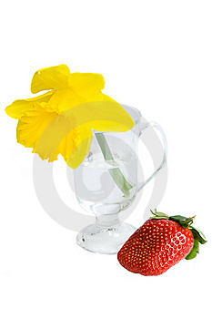 Daffodil And Strawberry Royalty Free Stock Image - Image: 9823576