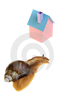 Snail Home Stock Image - Image: 9833251