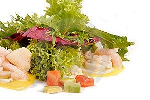 Prawn Salad Royalty Free Stock Image - Image: 9836296