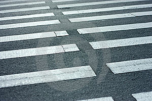 Pedestrian. Zebra. Stock Photography - Image: 9840252