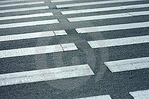 Pedone. Zebra. Fotografia Stock - Immagine: 9840252