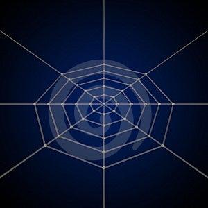 Spider Net Royalty Free Stock Image - Image: 9850216