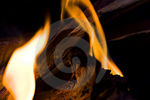 Fire Life Royalty Free Stock Images - Image: 9869029
