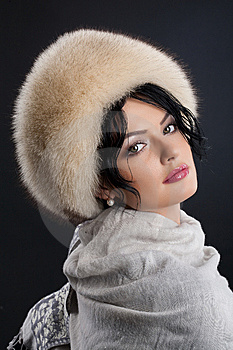 Woman In A Fur Hat Stock Photography - Image: 9876302
