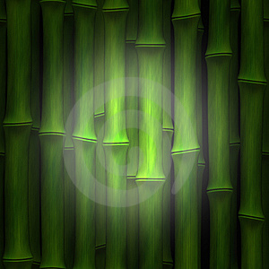 Bamboo Highlight Stock Images - Image: 9889104