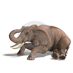 Huge Elephant Stock Image - Image: 9898461
