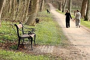 Walking The Dog Royalty Free Stock Photos - Image: 995948