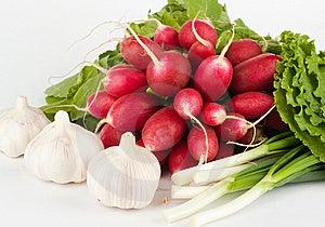 Spring Onions, Garlic, Lettuce And Radish Royalty Free Stock Photo - Image: 9906495