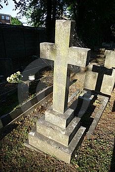 Webbed Gravestone Royalty Free Stock Image - Image: 9911326