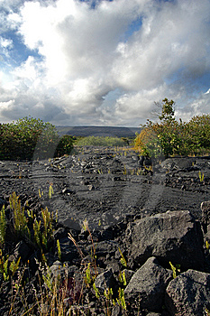 Big Island, Hawaii Royalty Free Stock Photography - Image: 9918457