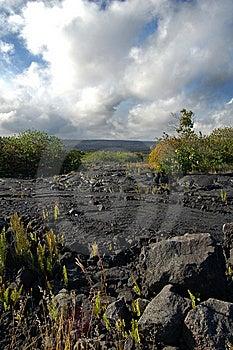 Grande île, Hawaï Photographie stock libre de droits - Image: 9918457