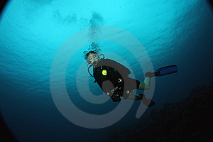 Wideangle Diver Stock Images - Image: 9937424