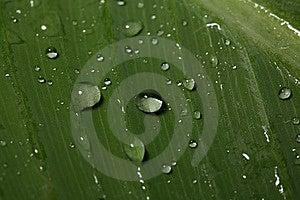 Water Stock Photo - Image: 9937430