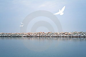 Sea Landscape Royalty Free Stock Photo - Image: 9950585