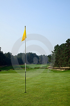 Flag On A Golf Field Royalty Free Stock Photography - Image: 9950587