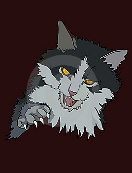 Enraged Cat Royalty Free Stock Images - Image: 9953019