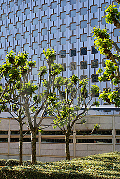 La Defense, Trees Royalty Free Stock Photos - Image: 9953618