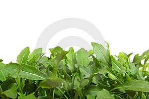 Fresh  Rucola Royalty Free Stock Images - Image: 9962849