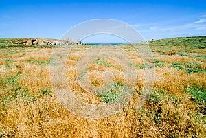 Deserted Island Stock Image - Image: 9984001