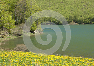 Mountain Landscape Stock Photo - Image: 9985950